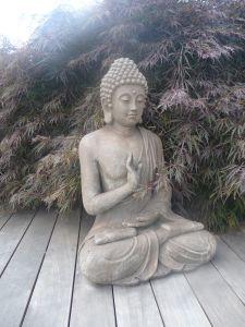 Zen ...